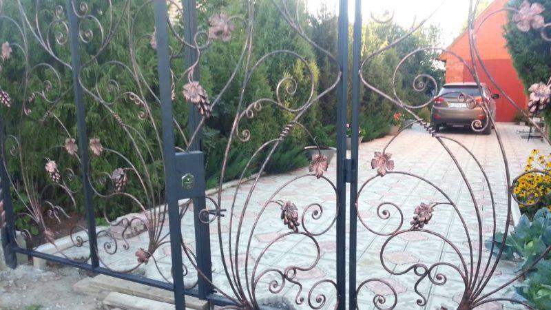 Кованая виноградная лоза забора удивительный ансамбль для разграничения зон участка