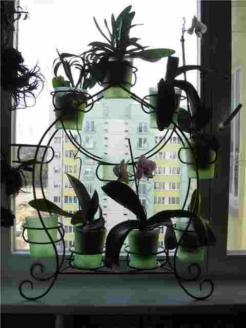 Практичное кованое изделие для цветов на окно