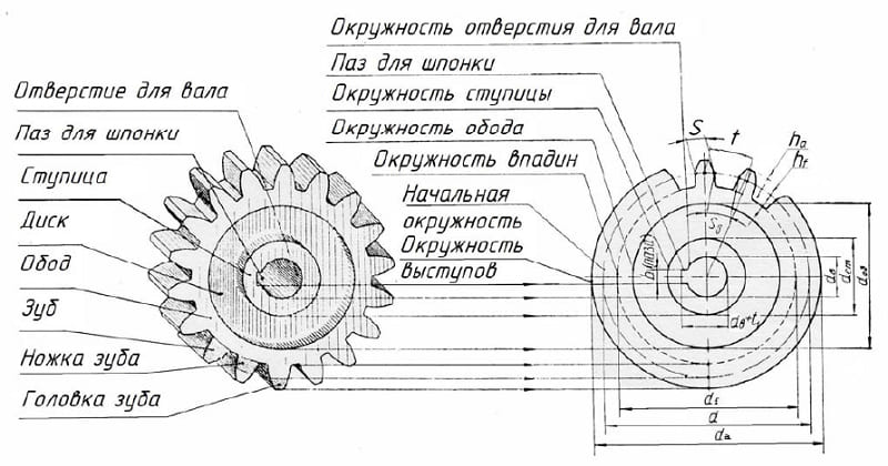 Устройство зубчатого колеса