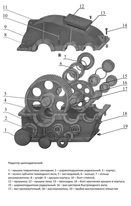 Устройство цилиндрического редуктора