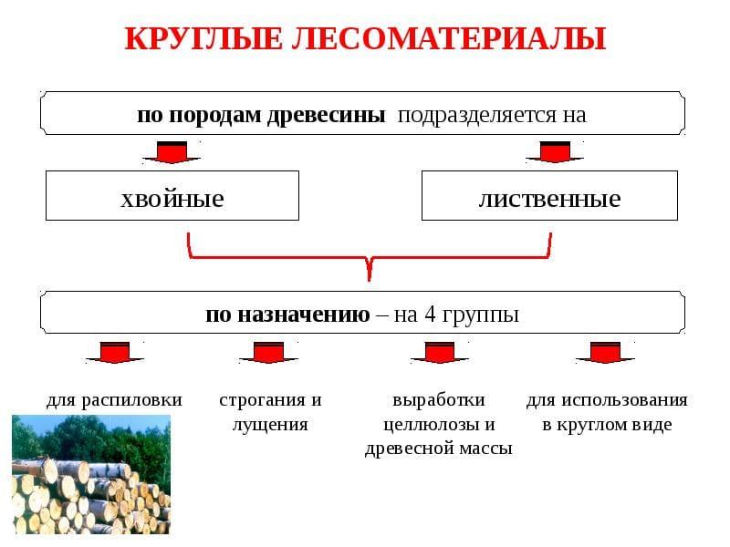 Классификация круглых лесоматериалов