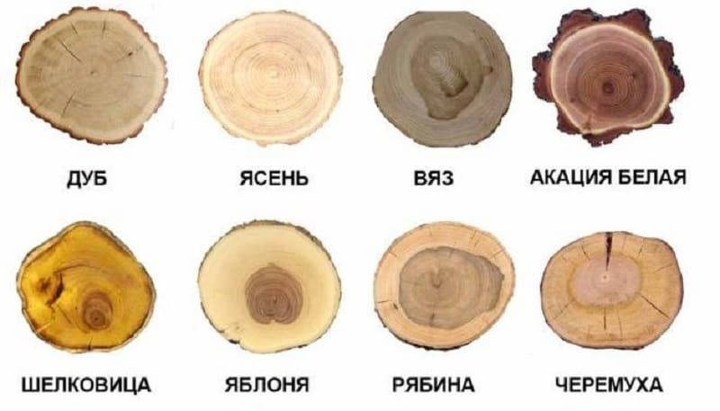 Классификация по породе древесины