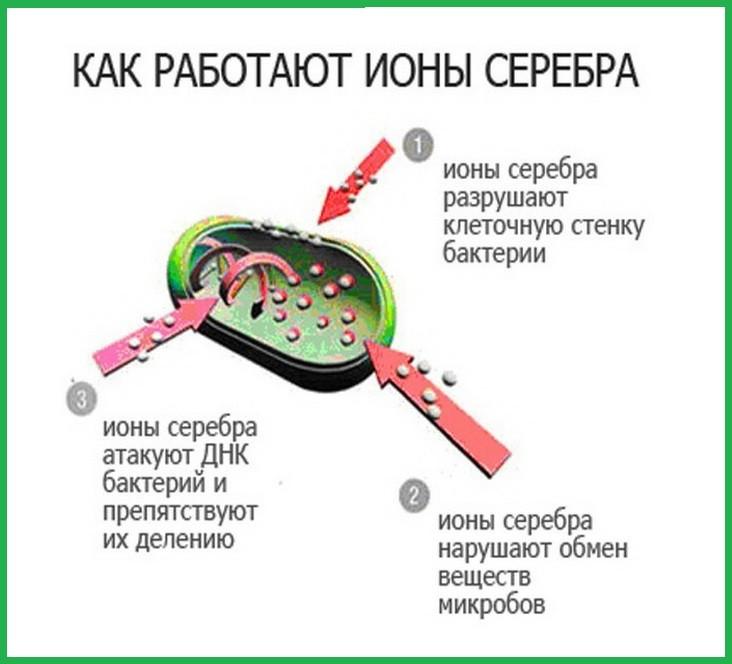 Бактерицидность серебра