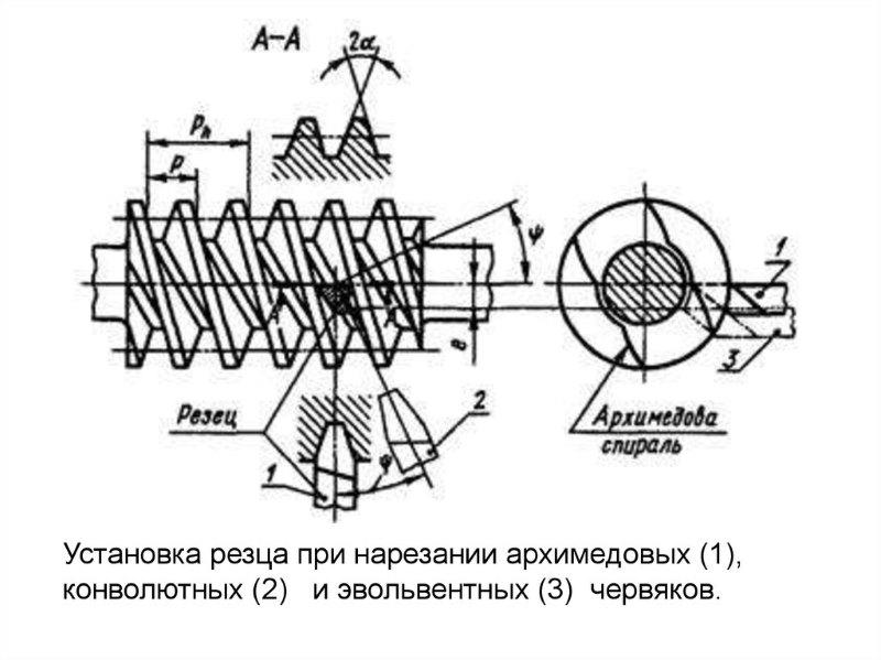 Установка резца при нарезании архимедовых, конволютных и эвольвентных червяков.